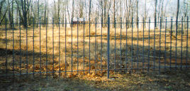five foot tall ornamental iron fence